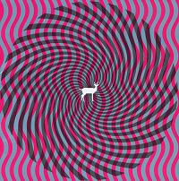Okładka Deerhunter - Cryptograms