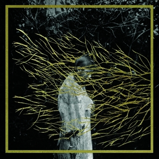 Okładka Forest Swords - Engravings