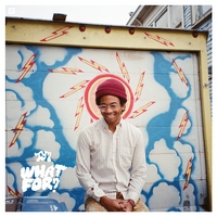 Okładka Toro Y Moi - What For?
