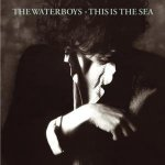 Obrazek pozycja 57. The Waterboys - This Is The Sea (1985)